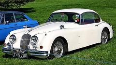 1957 Jaguar XK150 Coupe (monte-leone) Tags: