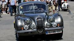 1951-53 Jaguar XK 120 C-Type (monte-leone) Tags: