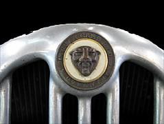 Jaguar - Logo (monte-leone) Tags: