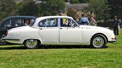 1966 Jaguar S-type 3-8litre (monte-leone) Tags: