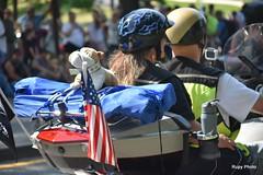 Rolling Thunder Parade 2019   (4835) (Beadmanhere) Tags: 2019 rolling thunder motorcycle harley davidson parade washington dc patriotism vietnam veterans military