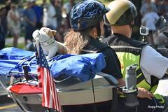 Rolling Thunder Parade 2019   (4834) (Beadmanhere) Tags: 2019 rolling thunder motorcycle harley davidson parade washington dc patriotism vietnam veterans military