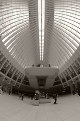 Oculus, Fisheye photo (sjnnyny) Tags: afdnikkor16mmf28fisheye nikond750 nyc oculus stevenj sjnnyny lowermanhattan interior calatrava skylight westfieldworldtradecenter pathhub mall shoppingcenter commuters shoppers sightsee transitfacility