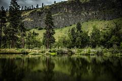 The Pond (Wesley214) Tags: trees reflection green photography pond easternwashington wesleybphotography wesleyburk washington whitepass