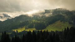 An alpine View (Netsrak) Tags: kleinwalsertal nature natur landschaft landscape cloud wolke green grün at österreich austria