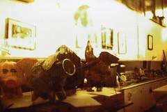 Fujica ST Stone House Piggy Art (▓▓▒▒░░) Tags: fuji fujica slr stone house sun valley art youth center projects analog classic retro vintage 35mm film camera japan kodak slide elite chrome tiltshift crossprocess la los angeles history sfv arts education
