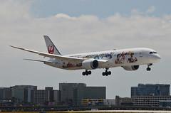 Japan Airlines Arashi Hawaii Jet Livery 787-900 Dreamliner (JA873J) LAX Approach 1 (hsckcwong) Tags: lax japanairlines 787 klax dreamliner 7879 787900 ja873j arashihawaiijet