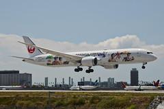 Japan Airlines Arashi Hawaii Jet Livery 787-900 Dreamliner (JA873J) LAX Approach 2 (hsckcwong) Tags: japanairlines arashihawaiijet 787900 7879 787 dreamliner ja873j klax lax