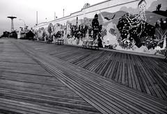 boardwalk (Atomic Citrocity) Tags: bw blackwhite coneyisland brooklyn art nyc