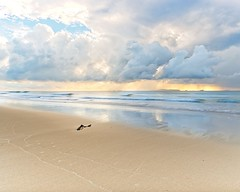 Beach Sunrise (Bron.Wolff) Tags: ocean light sea sky beach water weather clouds dark sand dramatic stormy cloudscape stormclouds australia queensland yeppoon