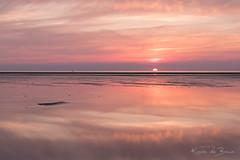 What goes down ... (karindebruin) Tags: annemarie nederland ouddorp sigrid thenetherlands zonsondergang zuidholland beach laagwater lowtide reflectie reflection sand strand sunset zand