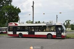 Transurb Galați YMP (Pavlos Andreas - Transport Photography) Tags: daf berkhof vdl sb250 galati transurb romania nederlands novio hermes nijmegen eindhoven bus autobuz