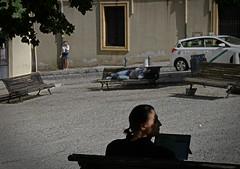 P1050283 (mickaelblanchet) Tags: grenada andalucia streetphotography spain lumix panasonic plaza sol espagne shadow tree street places sun