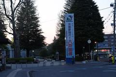 National winter sports festival coming (しまむー) Tags: fujifilm xe2 ebc fujinon 55mm f18 velvia yokohama kabushima 横浜 蕪島 八戸 蕪島神社 菜の花