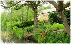 Riverside gardens. (A tramp in the hills) Tags: riverderwent derbyshire bamford garden riverside peakdistrict walking