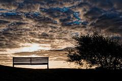 Sit down and make a wish - Asseyez-vous et faites un voeu (freephysique) Tags: banc bench normandie normandy france voeu wish coucher de soleil sunrise franceville merville nikon d750