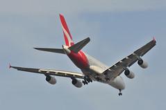 QF0001 SYD-SIN-LHR (A380spotter) Tags: approach landing arrival finals outermarker fourmilesout 4miles belly airbus a380 800 msn0047 vhoqg charlesulm qantasairways qfa qf qf0001 sydsinlhr runway27l 27l london heathrow egll lhr