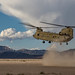 Desert Landing