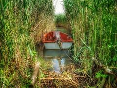 BALATON (petyhh) Tags: hdr balaton nature boat hungary magyar magyarország
