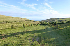 Dorset, UK (east med wanderer) Tags: england dorset uk worthmatravers village track walking winspit coast quarry purbeckstone downland cows