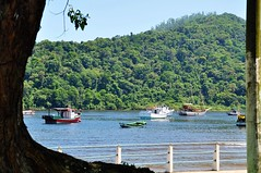 bfds procê (Ruby Augusto) Tags: barcos fence boats beach praia atlanticforest mataatlântica litoralnortepaulista branches trees árvore