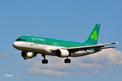 Santiago de Compostela (**REGFA**) Tags: avion santiago de compostela aena vuelos airbus aer lingus 320 galicia aeropuerto aterrizaje sol cielo azul verde