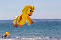 Pléneuf-Val-André (Oric1) Tags: breizh france oric1 côtesdarmor beach pva canon armorique sun eos plage vent cerfvolant brittany pléneufvalandré 22 bretagne hibou jeanlucmolle