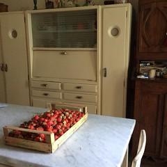 Fragole. (GiannLui) Tags: viagaribaldi casalelio fragole cucina