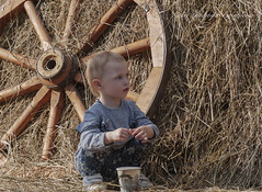 Child in haystack (Lyutik966) Tags: people child girl portrait hay grass wheel park moscow russia portraitsshots