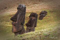The rise and the fall of the Moai (marko.erman) Tags: isle de pâques easterisland chile iledepaques pacific ocean moai sculpture remote isolated island mystery travel famous civilisation sony