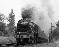 Leaving Loughborough (Treflyn) Tags: lms stanier black 5 460 45305 departs loughborough central station gcr great railway wet gray grey white mono monochrome tle timeline events photo charter
