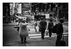 FILM - Detective Pikachu (fishyfish_arcade) Tags: 35mm analogphotography bw blackwhite blackandwhite canonsureshotz135 filmphotography filmisnotdead hp5 istillshootfilm monochrome newyork analogcamera compact film ilford mono streetphotography pikachu rain