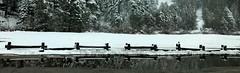 Happy Fence Friday reflections! (peggyhr) Tags: peggyhr dedication fence reflections snow trees hff img0094c california usa