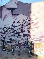 Street Art (AnaAyana) Tags: lisbon lisboa graffitti streetart
