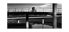 The Cyclist (henny vogelaar) Tags: bridge bw liniebrug nigtevecht fietsbrug bicycle ivo mulders netherlands
