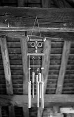 2.8 test (This is not a Lens) Tags: schneider kreuznach edixa xenon 50mm 19 28 manual analogue film ilford fp4 plus 125 black white noir et blanc caffenol stand development