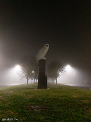 The Owl Statue on Saturday morning (garydlum) Tags: owlstatue publicart canberra australiancapitalterritory australia
