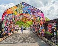 Tunnel of Love (mgstanton) Tags: tunneloflove fabric natick t crochet train natickcenter arbor yarn art installation outdoorart shadows tunneloflovenatick