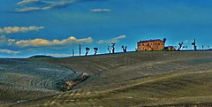 Val d'Orcia, Toscana (gerard eder) Tags: world travel reise viajes europa europe italy italia italien tuscany toscana toskana valdorcia landscape landschaft paisajes panorama outdoor natur nature naturaleza countryside