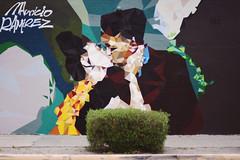 New Mexico - XLIX (• CHRISTIAN •) Tags: nouveaumexique newmexico usa étatsunis southwest albuquerque abq urbain urban art streetart graffiti baiser kiss grandangle wideangle