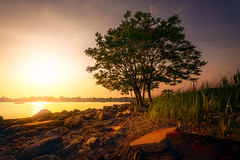 Seaside-Park-Bridgeport-CT-USA_05312019-9 (LBSimmsPhotography) Tags: golden sunset view background beach colorful connecticut culture horizonoverwater landscape natural nature ngc northamerica outdoor scenic serene sky spring travel vibrant water