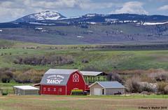 Crystal Springs Ranch (walkerross42) Tags: barn red crystalspringsranch ranch mountain parispeak idaho berlakecounty farm hills snow spring