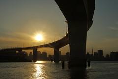 Tokyo Bay Sunset (seiji2012) Tags: japan tokyo tokyobay sunset silhouette light road 有明 東京湾 首都高 レインボーブリッジ シルエット 夕陽 東京タワー happyplanet asiafavorites