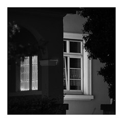 Midday Rest - Conversation (Thomas Listl) Tags: thomaslistl blackandwhite biancoenegro noiretblanc windows light mood lines plants dark square conversation