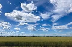 iph8301 (gzammarchi) Tags: italia paesaggio natura pianura campagna landscape ravenna villanovadiravenna nuvola grano poesia haiku