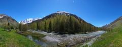 En Vanoise (yoduc73) Tags: vanoise parc montagne plateau vallon vallée torrent ruisseau foret nature paysage alpes tarentaise savoie champagny haut sommet neige enneigé grandecasse epena truite gliere