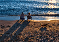 moments at the beach (mare_maris) Tags: moments shadows light streetphotography beachphotography people women sunlight mediterranean med greece hellas dog colorful shininglight glowing sea mare water raybeam nature nikon d7500 nikkor35mm