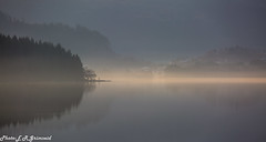 A Misty Morning (2000stargazer) Tags: kalandsvatnet fana bergen morning mist mistymorning fog lake reflections sunrays silhouette trees forest hills dark landscape nature norway waterscape canon fanaposten bergensavisen getty