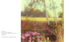 "Zeiss Ikon Taxona   1953-1959 (alex ""Heimatland 2019"") Tags: zeiss ikon taxona sucherkamera tessar tempor analog manual film kodak200 oberlausitz cunewalde"