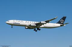 airbus A340-300 Lufthansa (D-AIGN) (lucas slow) Tags: avion ciel cockpit photo spotting airbus a340300 a340 lufthansa daign landing airport chr lflx châteauroux roues turboréacteurs winglets star alliance